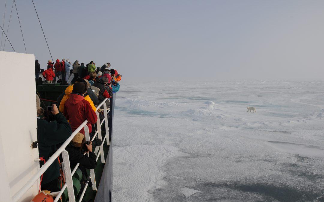 Eté 2019 en Arctique