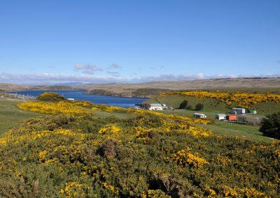 FalklandCG201002